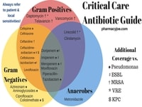 critical care antibiotic guide